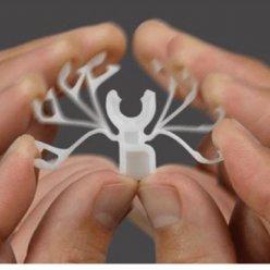 Složený snímek brouka s rukou rozpohybovanými končetinami