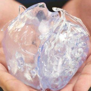 Průhledný model srdce vyrobený 3D tiskem v rukou operátora
